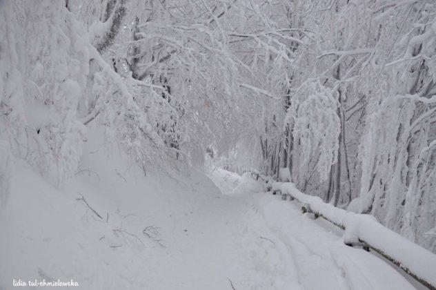 Zima w Bieszczadach 15 632x420 - Zima w Bieszczadach
