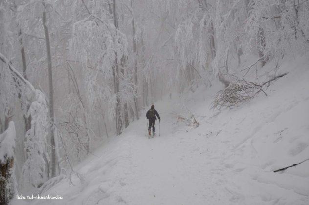 Zima w Bieszczadach 16 632x420 - Zima w Bieszczadach