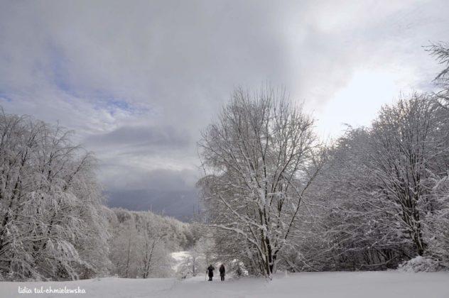 Zima w Bieszczadach 18 632x420 - Zima w Bieszczadach