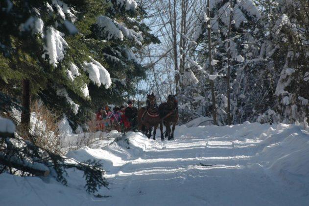 Zima w Bieszczadach 27 631x420 - Zima w Bieszczadach