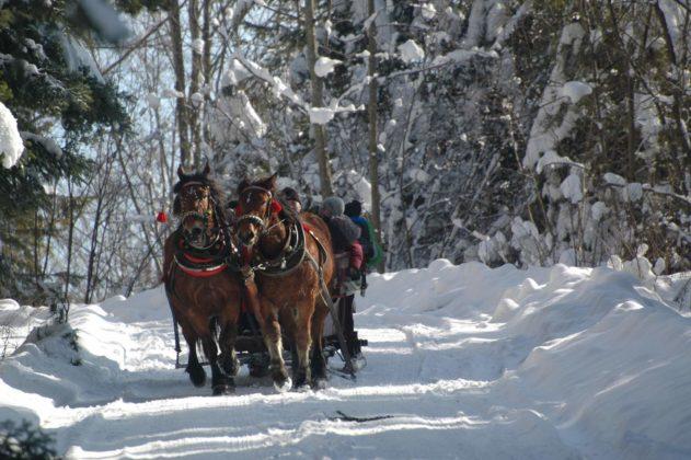 Zima w Bieszczadach 28 631x420 - Zima w Bieszczadach