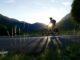 Rowerem z Zakopanego do Soliny - petycja na rzecz budowy trasy rowerowej łączącej Zakopane z Soliną