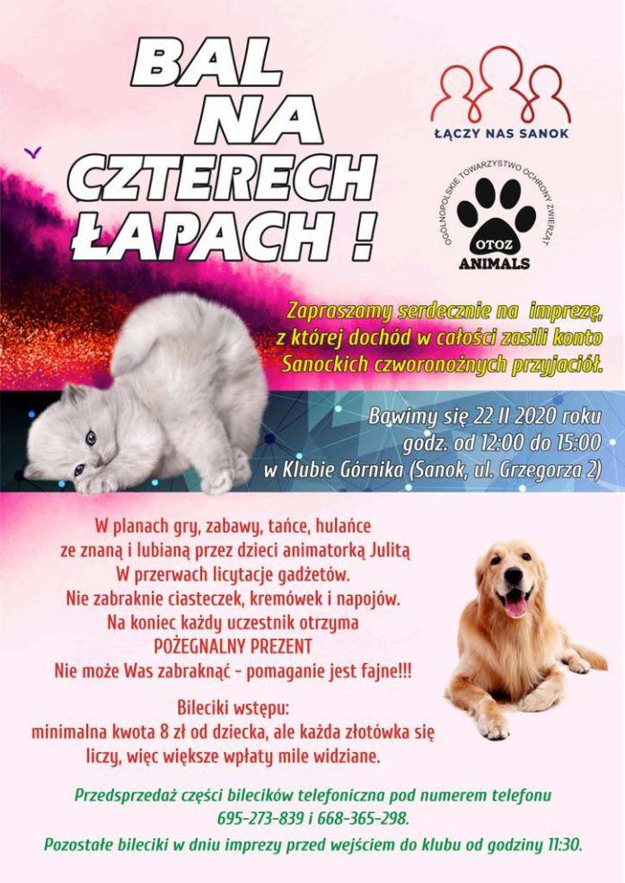 Bal na czterech łapach! OTOZ Animal Inspektorat Sanok zaprasza dzieci na zabawę