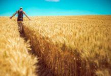 rolnicy dopłaty 218x150 - Tygodnik Sanocki