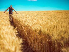rolnicy dopłaty 265x198 - Tygodnik Sanocki
